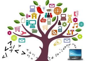Bespoke Website Systems Development